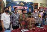 Jual burung dilindungi via facebook, seorang guru honorer ditangkap polisi