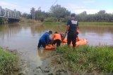 Zainal tenggelam saat cari lokan di Batang Masang yang merupakan habitat buaya muara