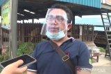 Cegah flu babi, Pemkot Batam kontrol kesehatan babi di Pulau Bulan