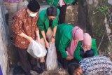 Nasrul Abit ajak masyarakat jaga saluran irigasi agat tidak tercemar sampah