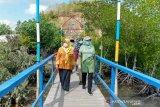 Pemprov NTB membantu penataan kawasan wisata mangrove Sekotong