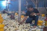 Peternak Lampung keluhkan harga ayam pedaging dan broiler yang anjlok