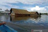 BPBD: Dampak banjir Konawe meluas ke 50 desa, 3.114 jiwa mengungsi