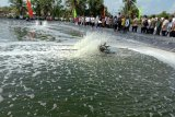 Menteri KKP minta budi daya udang di Lampung Timur  diintensifkan