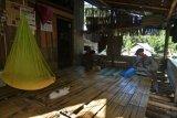 Coklit masyarakat adat Salena