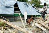 Basarnas sebut 10 korban banjir bandang Luwu Utara belum ditemukan
