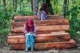 Sejumlah siswa SDN 1 Inten Jaya mengerjakan tugas melalui gawainya di Kampung Lebak Limus, Lebak, Banten, Senin (20/7/2020). Sejumlah siswa yang tinggal di daerah pelosok tersebut kesulitan dalam mengikuti kegiatan belajar mengajar (KBM) secara daring dan tepaksa menempuh perjalanan hingga satu kilometer dari kediamannya menuju ke dataran yang lebih tinggi agar mendapatkan jaringan internet guna mengerjakan tugas sekolah melalui gawai yang nantinya dikirim melalui aplikasi percakapan WhatssApp. ANTARA FOTO/Muhammad Bagus Khoirunas/agr/wsj.