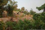 Pemprov Sulteng disarankan perbaiki tata kelola tambang di Donggala