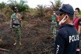 Polisi amankan seorang pemuda diduga bakar lahan sawit di Kapuas