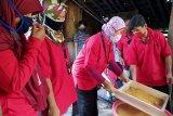 Semen Indonesia Group dorong  peningkatan ekspor gula semut Cilacap
