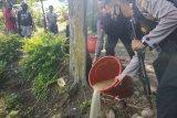 Polisi Wamena amankan empat warga penjual minuman lokal beralkohol