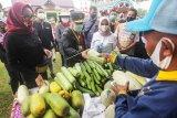 Optimalkan pemasaran produk pertanian melalui Pasar Tani Berkah