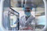 Sinopharm China uji coba calon vaksin COVID-19 di Brazil