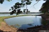 Warga memancing ikan di Waduk Saradan yang volume airnya mulai menyusut di Kabupaten Madiun, Jawa Timur, Sabtu (25/7/2020). Memasuki awal musim kemarau waduk seluas sekitar 1.000 hektare tersebut volume airnya sudah mulai menyusut, sehingga sebagian warga memanfaatkannya untuk memancing ikan. Antara Jatim/Siswowidodo/zk.