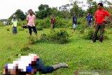 Abdullah, seorang petani di Aceh Barat ditemukan tewas mengenaskan