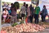 Nilai tukar petani Papua naik 1,46 persen