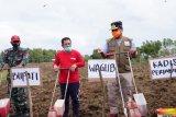 Wagub Sulsel dorong pemuda jadi penggerak kedaulatan pertanian