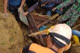 BPBD Paniai-Koramil Enarotali evakuasi korban longsor di Kampung Dupia