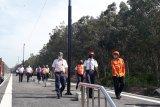 Stasiun KA Way Tuba diresmikan