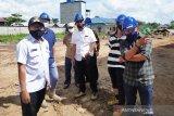Komisi IV DPRD Kotim telusuri dugaan pelabuhan tidak sesuai standar