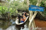 Menteri LHK Siti Nurbaya dan Erzaldi Rosman kunjungi destinasi wisata Mangrove Munjang Babel
