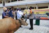 Kapolresta Jayapura sumbang hewan kurban sapi ke ponpes dan panti asuhan