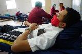Demi stok darah saat pandemi, pegawai Semen Gresik siap donor