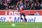 Napoli resmi datangkan Victor Osimhen dari Lille