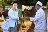 61 pasien COVID-19 di Kabupaten Batang sembuh