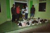 Pemkab Mitra serahkan 50 ekor hewan kurban
