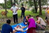 Brimob Polda Sulawesi Tenggara sembelih 39 ekor sapi