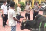 Polres Palu siapkan 14 ekor hewan kurban Idul Adha