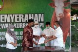Pascasembuh COVID-19, Wakil Wali Kota Solo serahkan hewan kurban dari Jokowi