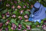 Santriwati membungkus daging kurban dengan daun kayu jati di Yayasan PesantreneurshiPAY, Desa Margaluyu, Kabupaten Tasikmalaya, Jawa Barat, Sabtu (1/8/2020). Daging kurban yang dikemas menggunakan daun jati dan tali bambu tersebut merupakan upaya mendukung program pemerintah peduli terhadap lingkungan dan meminimalisir penggunaan kantong plastik. ANTARA JABAR/Adeng Bustomi/agr