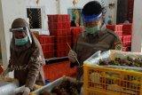 Sempat terhenti akibat COVID-19, ekspor manggis Sumbar mulai menggeliat