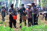 Wali Kota Tangerang apresiasi TNI-Polri lakukan program ketahanan pangan