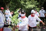 Gubernur Riau tanam 2.020 batang mangrove di Bandar Bakau Dumai