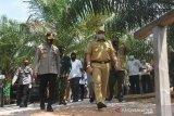 Gubernur Babel Kembali Kunjungi Kesiapan Hutan Mangrove Munjang