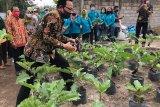 Yogyakarta integrasikan Gandeng Gendong dalam paket wisata