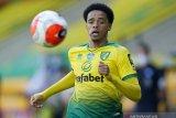 Liverpool incar bek Norwich Jamal Lewis untuk pelapis Robertson