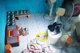 Polres Kotim bongkar pembuatan sarang walet palsu berbahan mie soun