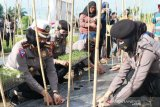 Polwan Sulteng bagikan bibit ikan dan tomat ke masyarakat Donggala