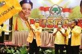 Taufan Pawe pimpin Golkar Sulawesi Selatan