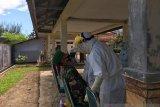 160 spesimen tes usap COVID-19 di Pasaman Barat dikirim ke labor Universitas Andalas