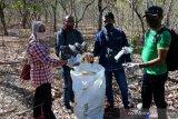 Wartawan NTT gelar bersih sampah di TWA Camplong