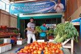 Perdagangan elektronik Sasuka dorong pemberdayaan petani di Papua