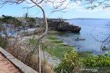 Warga Kota Kupang dukung  Pantai Batu Kepala dikelola investor