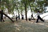 Desa Margasari gelar upacara HUT Kemerdekaan di hutan mangrove