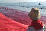 Aktivis lingkungan-Mapala bentangkan bendera merah putih 63 meter di laut