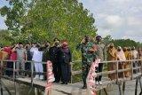 Bupati Bengkalis Riau minta pengembangan wisata mangrove ditingkatkan tarik wisatawan